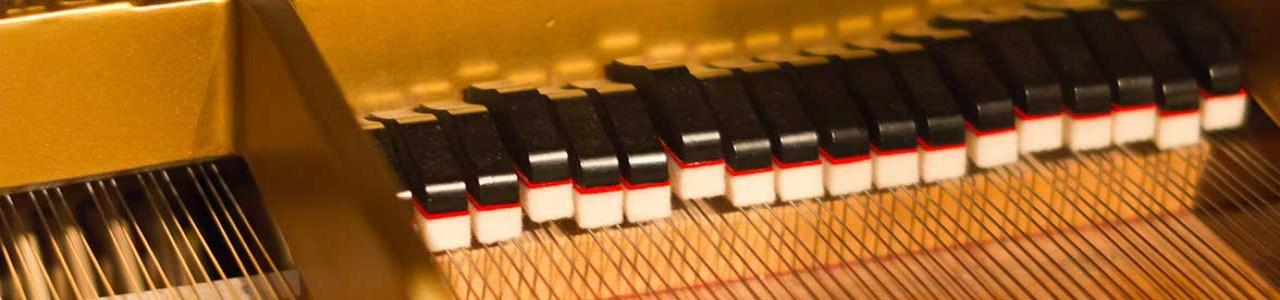 Dan Cavanagh | Official Site | Jazz Pianist, Composer, Educator
